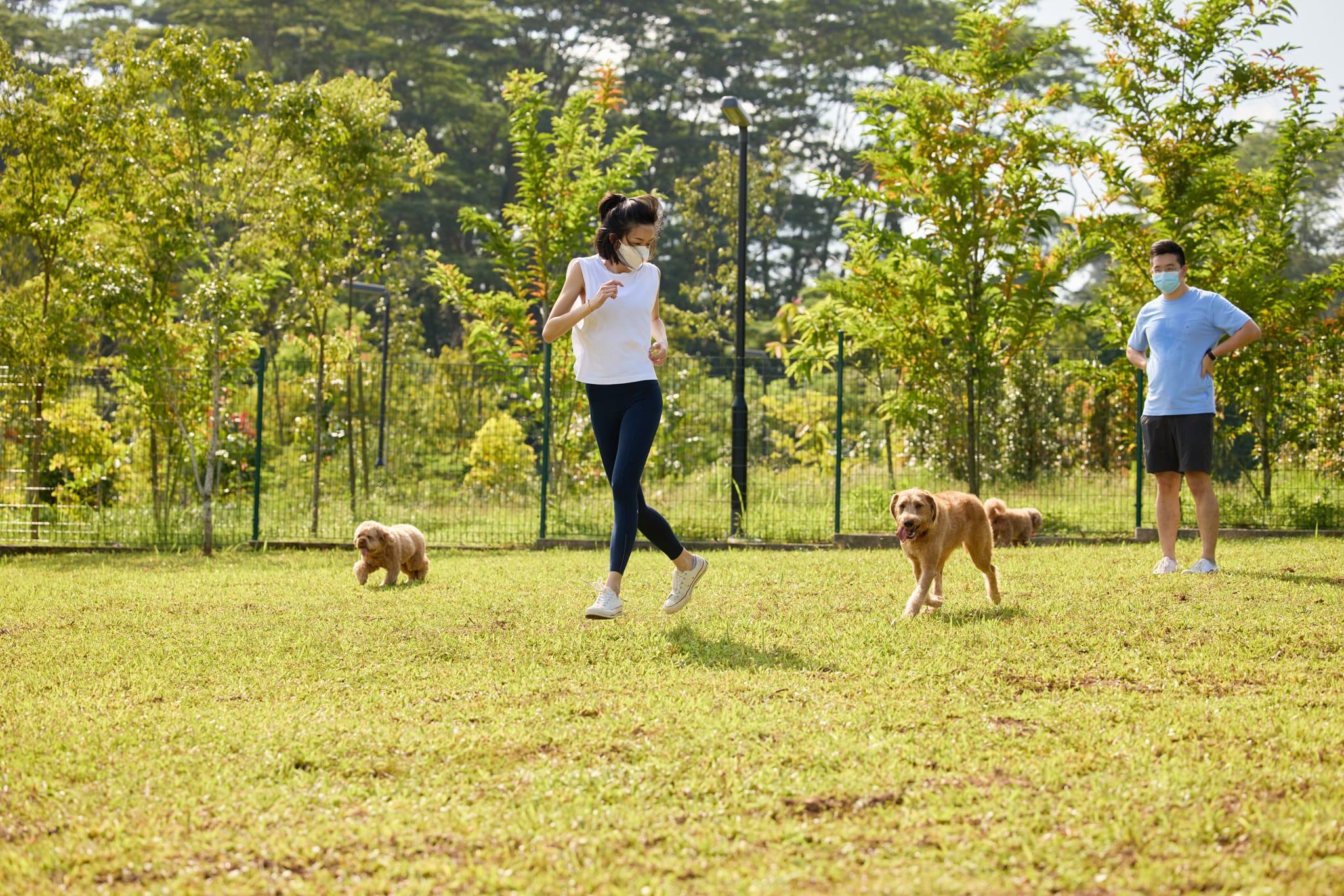 dog-run-bukit-gombak-park
