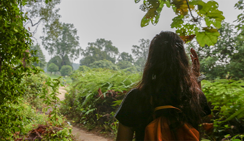 hype-forhikes-macritchie-reservoir