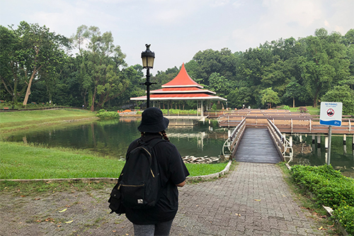 hype-for-hikes-macritchie-reservoir